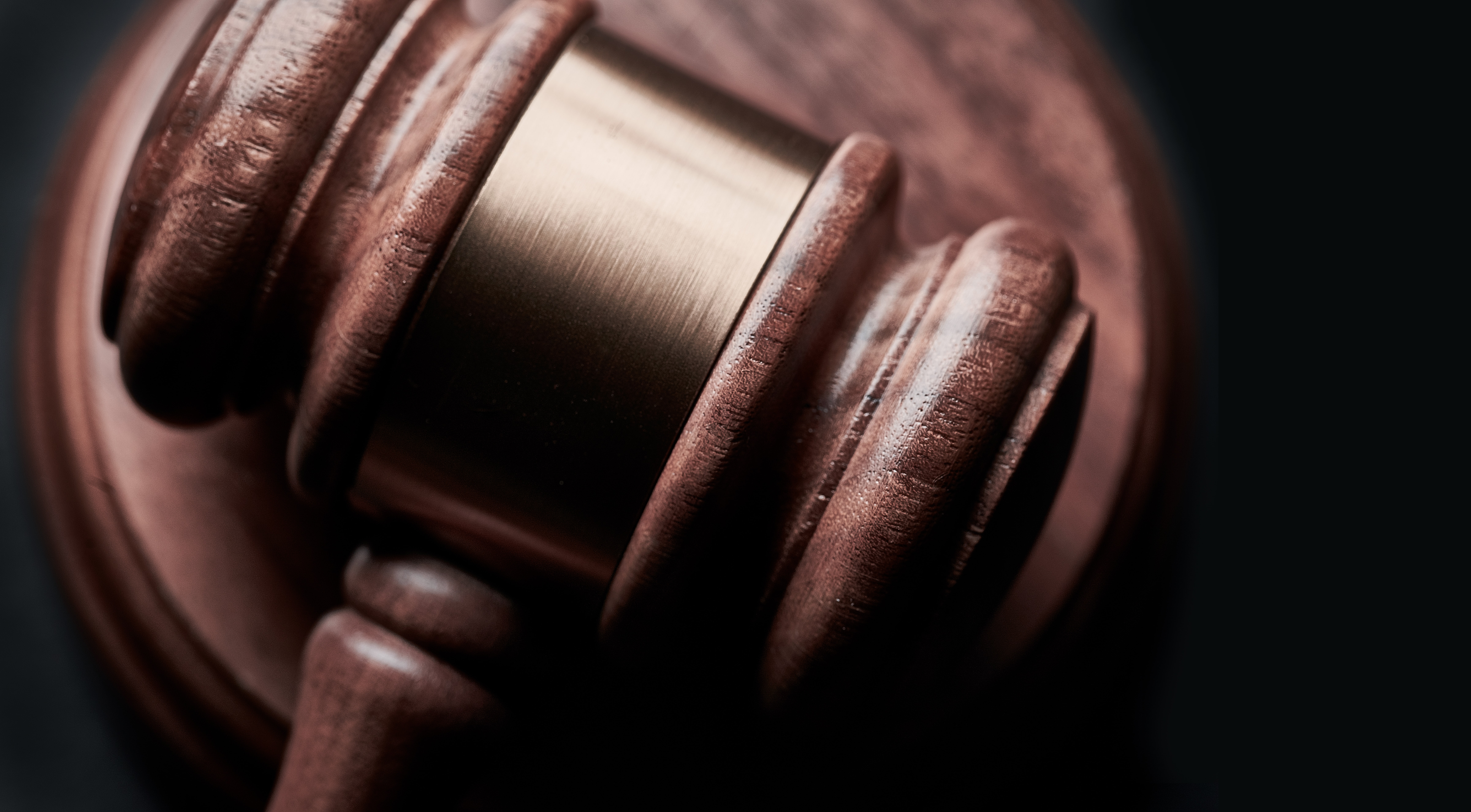 The Mystery of the Efficient and Responsible Litigant: Notes on a Data-Driven Analysis of Litigation in Public Contracts from the Delhi High Court