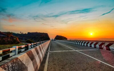 An Actor of Impediment: National Highways Authority of India and Environmental Impact Assessments in Highway Projects